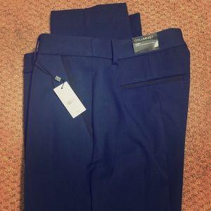 Navy Blue with black trim dress pant—NEW